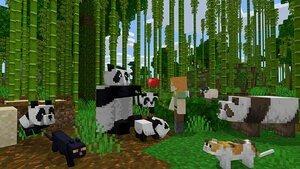 Bamboo scene