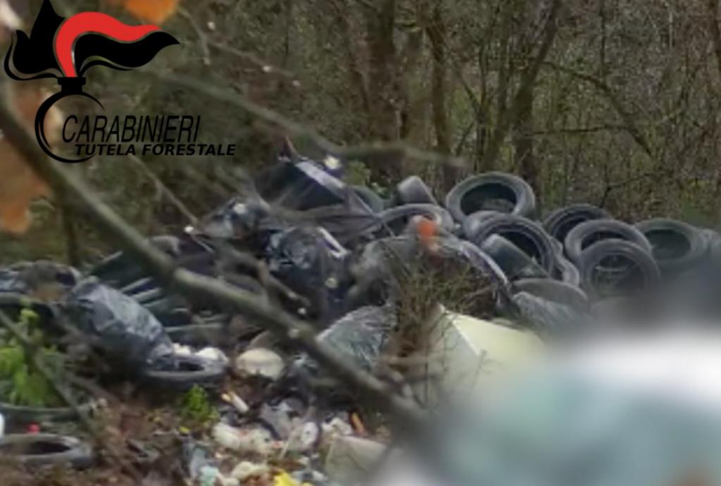 Special waste 800 kg. Entrepreneurship Report by Forest Carabinieri. Video photos