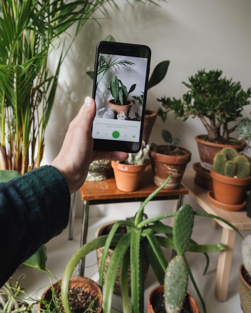 2021 Best Applications for Plant and Garden Care