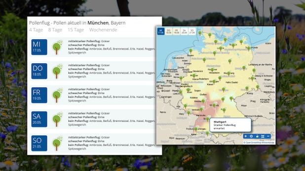You can find an interactive pollinator map at Wetter.de.