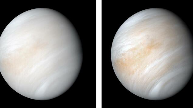 Search for life on a neighboring planet: NASA wants to return to Venus - Knowledge