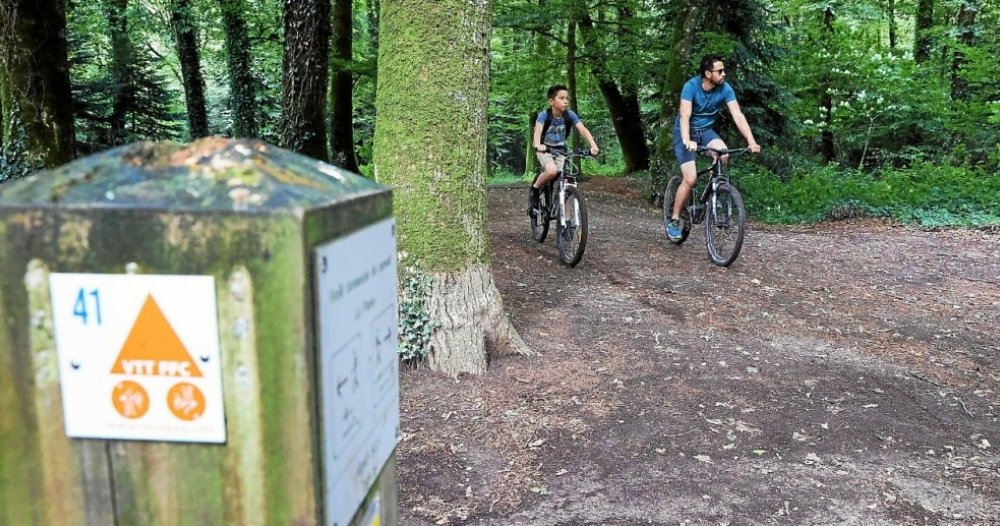 Guimberley - 31 mountain bike loops to find in Guimberley