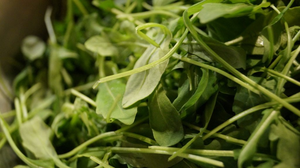 Rocket plants are always healthy and luxurious thanks to this powerful trick