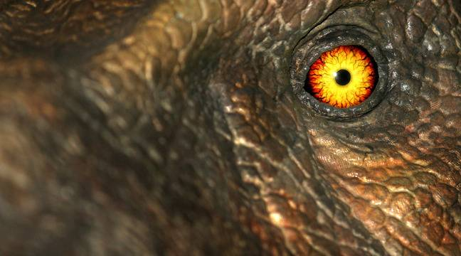 The dinosaurs were not already in great condition when a meteorite hit Earth