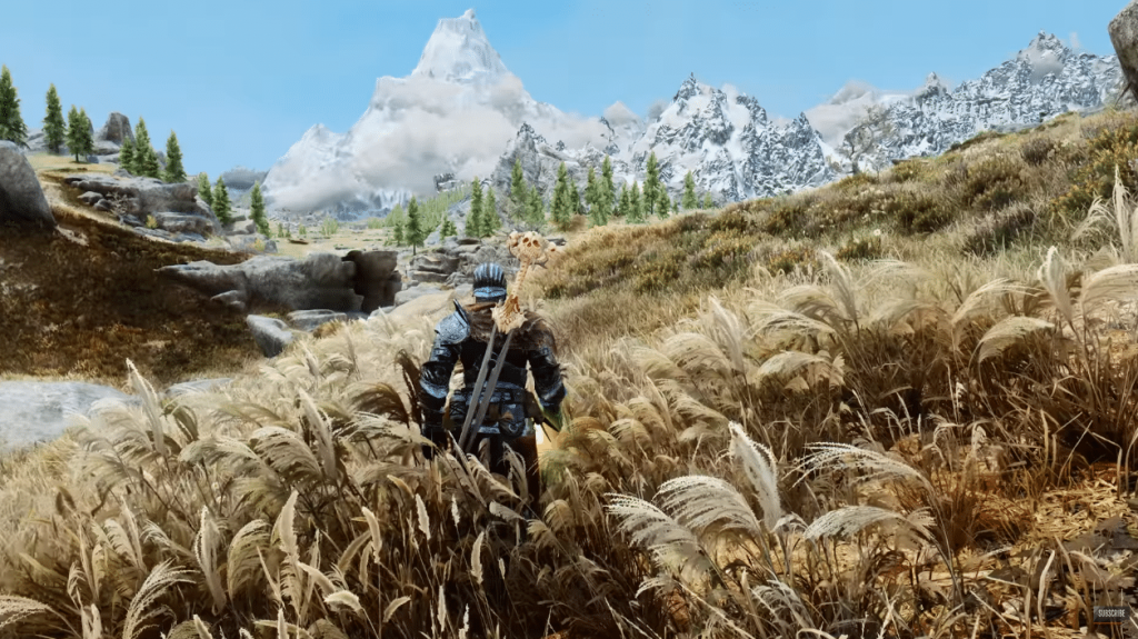 Skyrim has been replaced by more than 500 modes and tracks via Resheat
