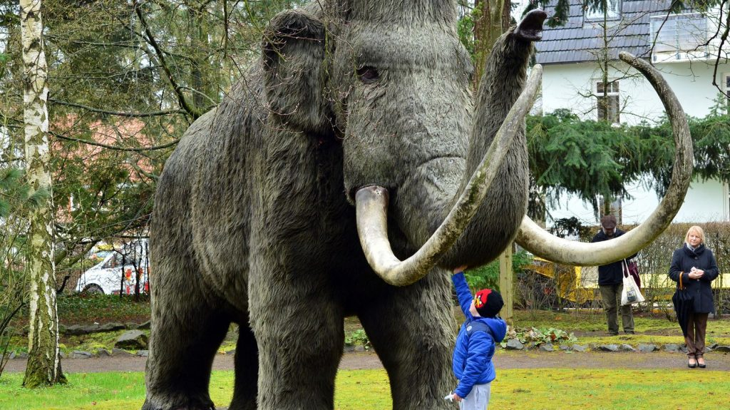 """""""We were surprised to find that Mammoth had made very long journeys,"""" explains one researcher"""