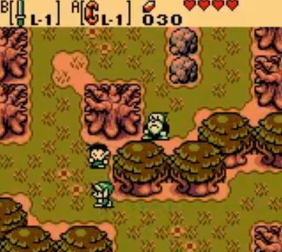 The Legend of Zelda: The Oracle of Ages / Seasons