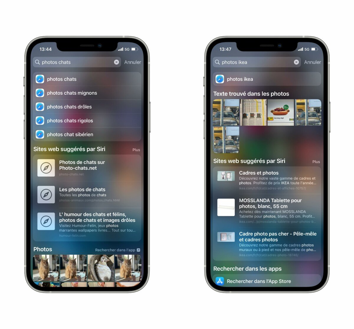Advanced search, photo search capability and even text within photos