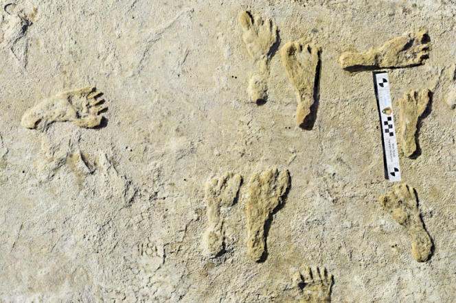 Human footprints buried in rocks in White Sands National Park, New Mexico.